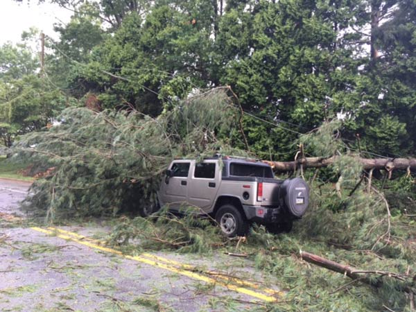 <div class='meta'><div class='origin-logo' data-origin='WPVI'></div><span class='caption-text' data-credit=''>A tree fell on a vehicle on McKennans Church Road in Wilmington, Delaware.</span></div>