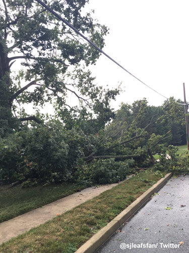 <div class='meta'><div class='origin-logo' data-origin='WPVI'></div><span class='caption-text' data-credit=''>Action News viewer Rob Strauss‏ took this photo of a tree down on Coles Road in Blackwood, NJ.</span></div>