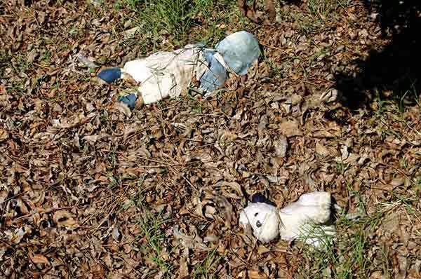 "<div class=""meta image-caption""><div class=""origin-logo origin-image none""><span>none</span></div><span class=""caption-text"">Two dolls lie in a yard in St. Bernard Parish. (WPVI Photo)</span></div>"