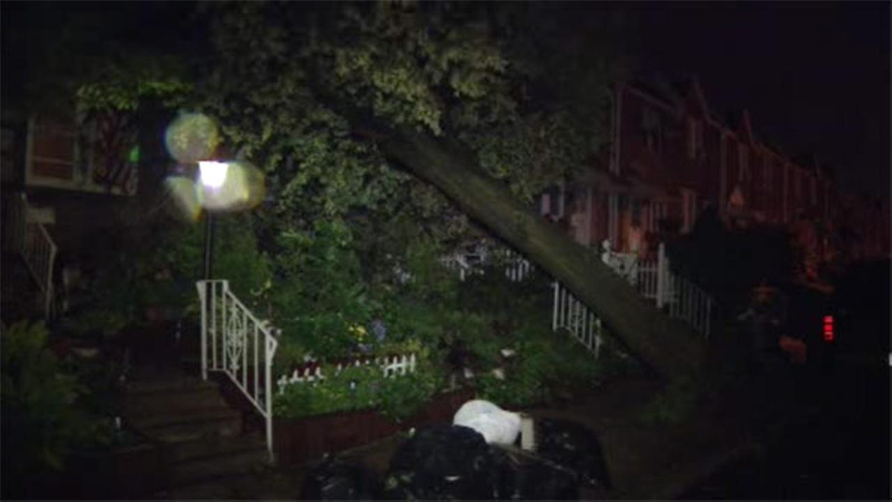 Tree falls on top of rowhome in Lawncrest