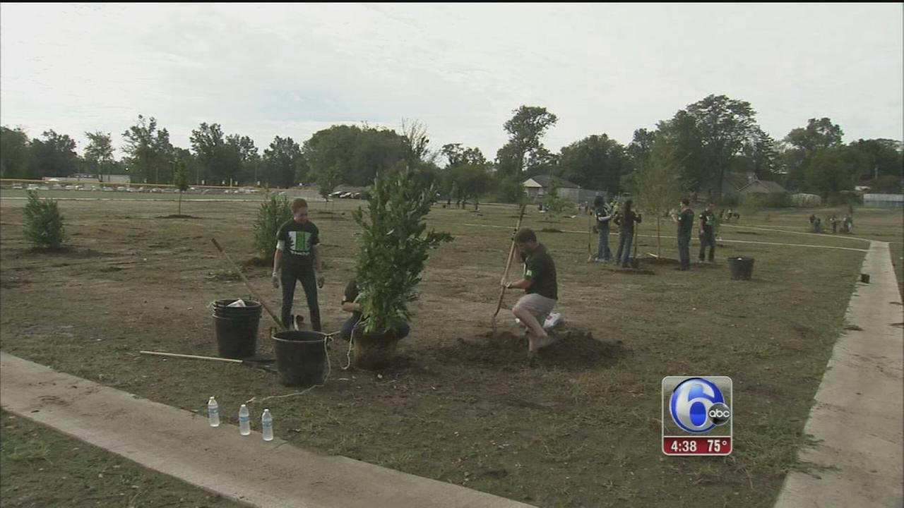 Landscaping for flood management