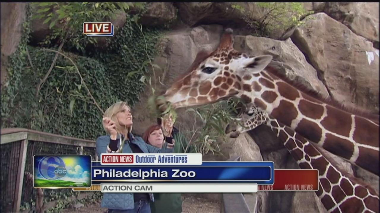 VIDEO: Cecily Tynan at Philly Zoo