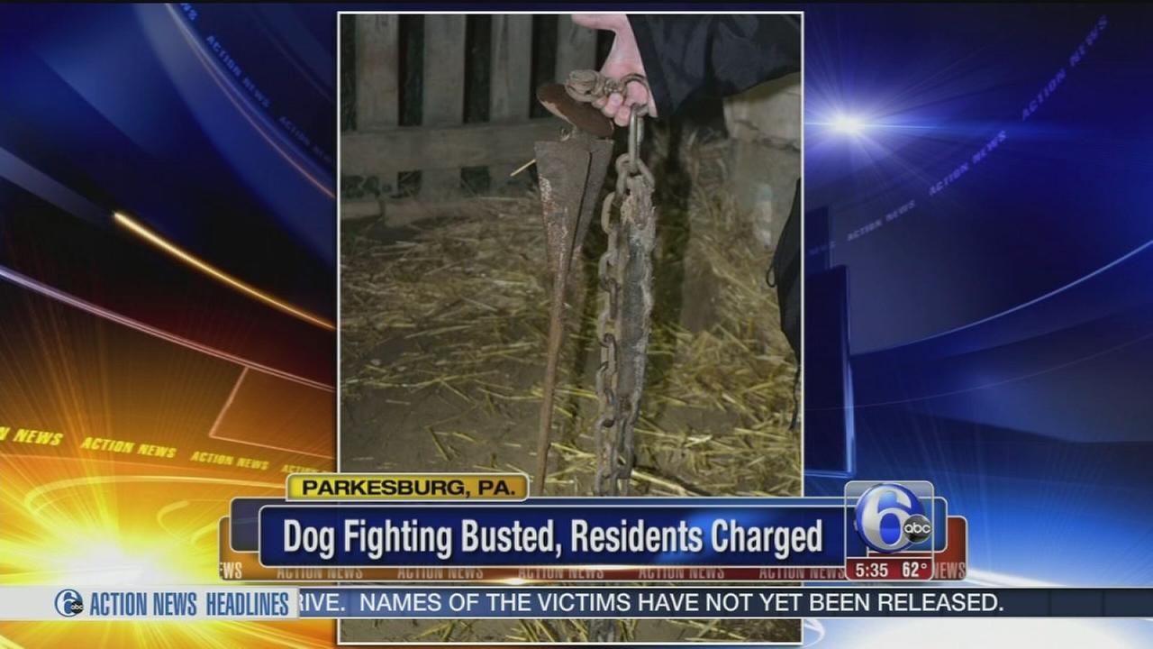 VIDEO: 2 arrested in dogfighting raid