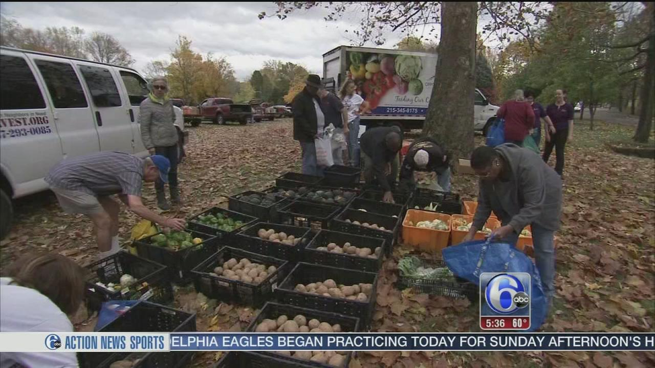 VIDEO: Rolling Harvest helps feed thousands of hungry families