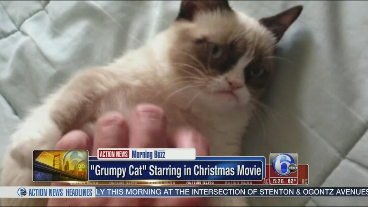Video grumpy cat is starring in a christmas movie 6abc thecheapjerseys Gallery