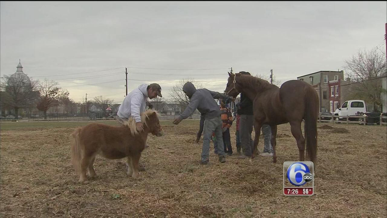 VIDEO: Local horse club