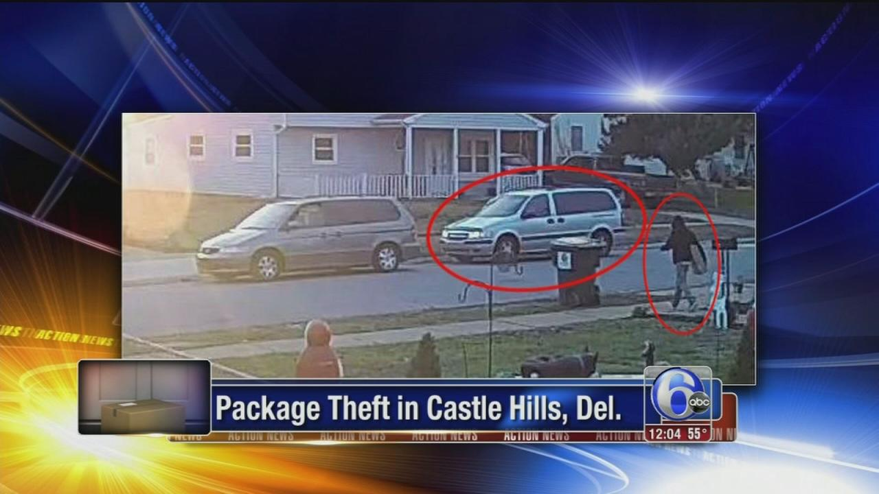 VIDEO: Package theft in Castle Hills, Del.