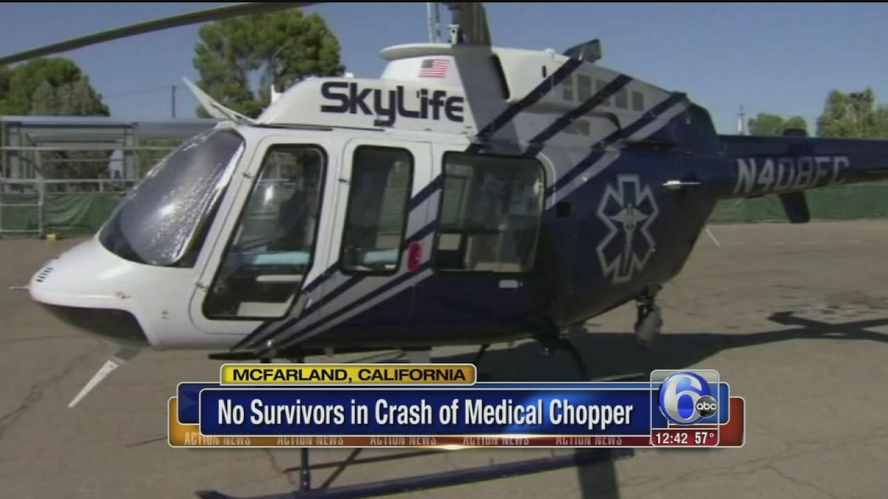 VIDEO: No survivors in medical crash