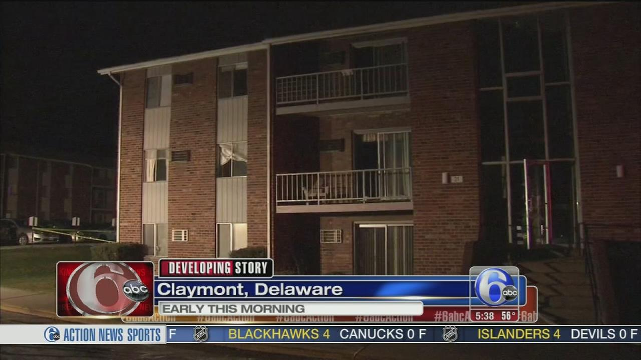 VIDEO:  Fire damages Del. apt complex