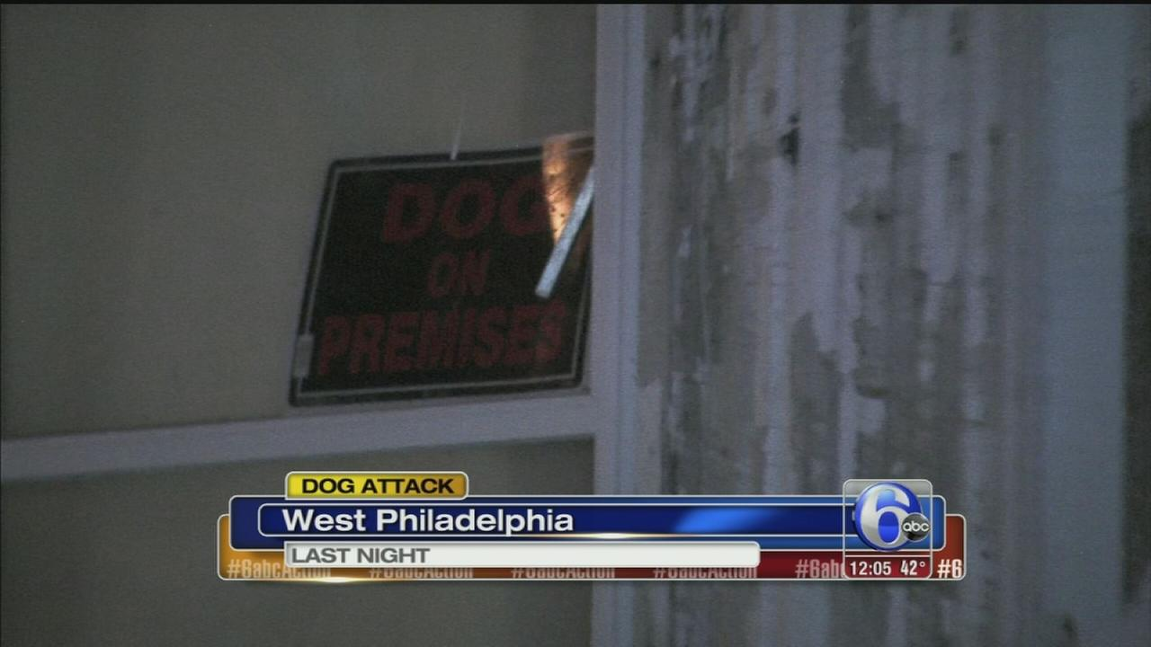 VIDEO: Dog attacks in girl in West Philadelphia