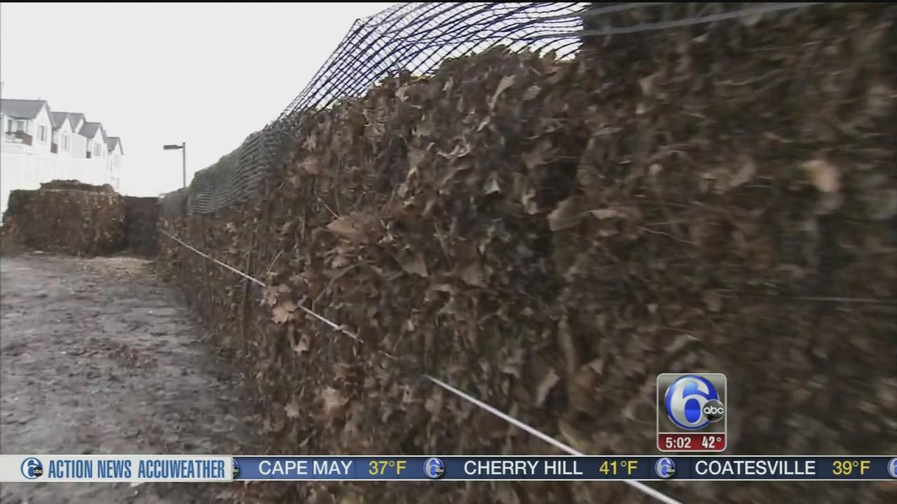 VIDEO: Leaf bales used to hold back tide at Jersey shore