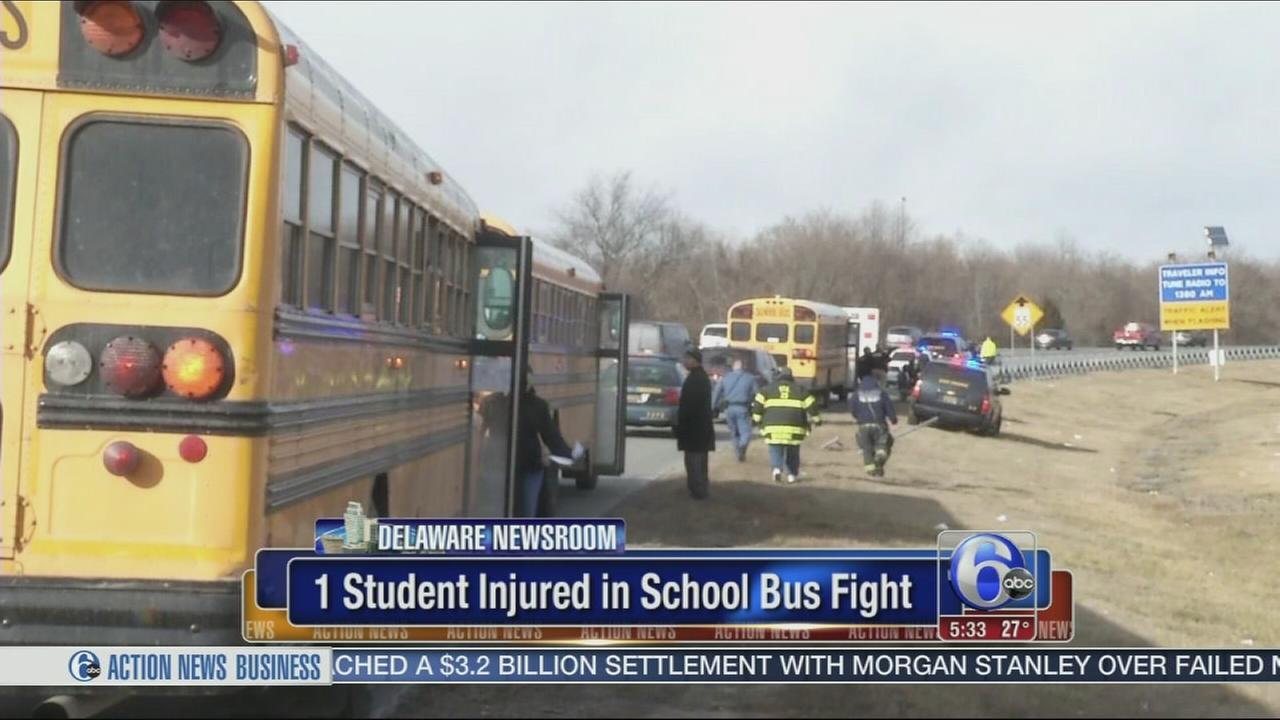 VIDEO: Student injured in school bus fight