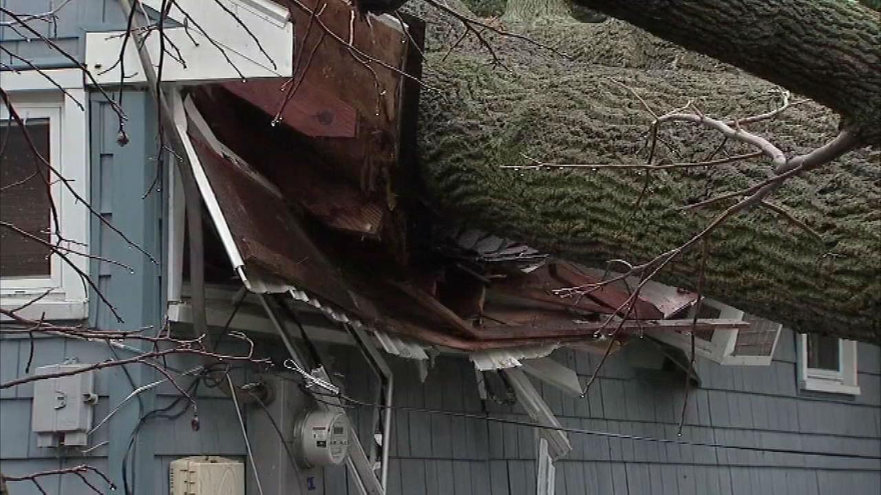 PHOTOS: Damage from fast-moving storms