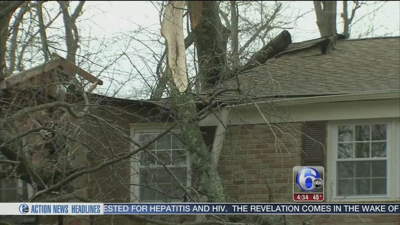 VIDEO: Storms bring down trees in South Jersey