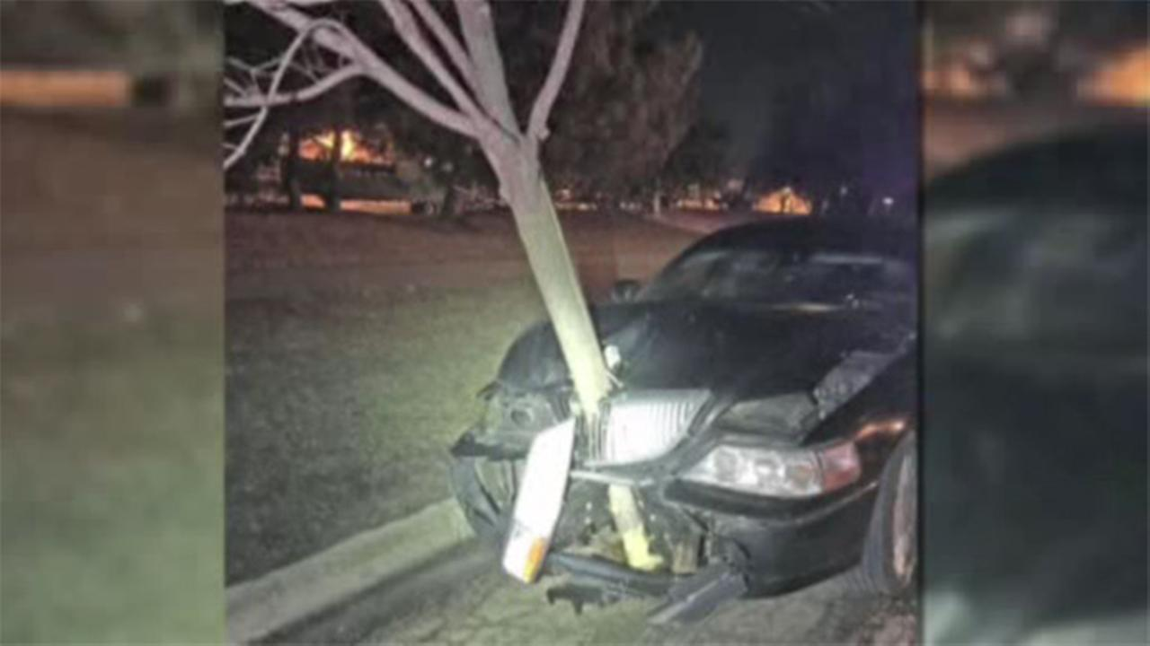 Driver with 15 foot tree in grill arrested
