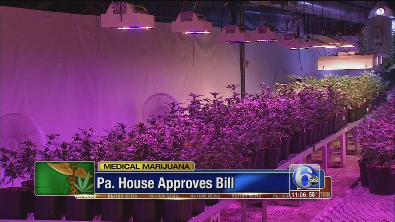 VIDEO: House votes to legalize medical marijuana in Pennsylvania