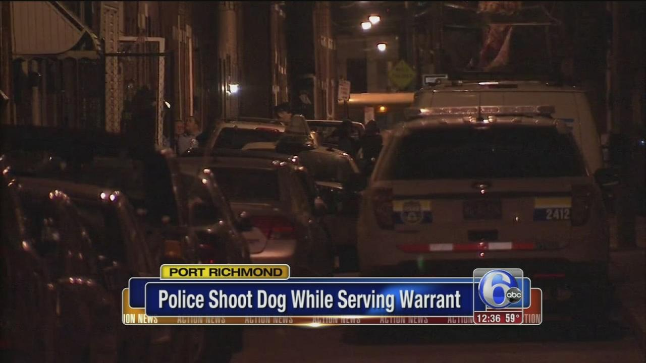 VIDEO: Police shoot dog while serving warrant