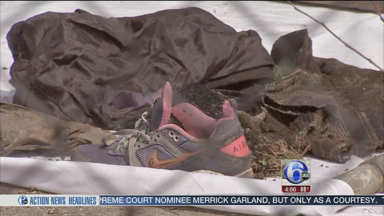 VIDEO: Human bones found in Tioga