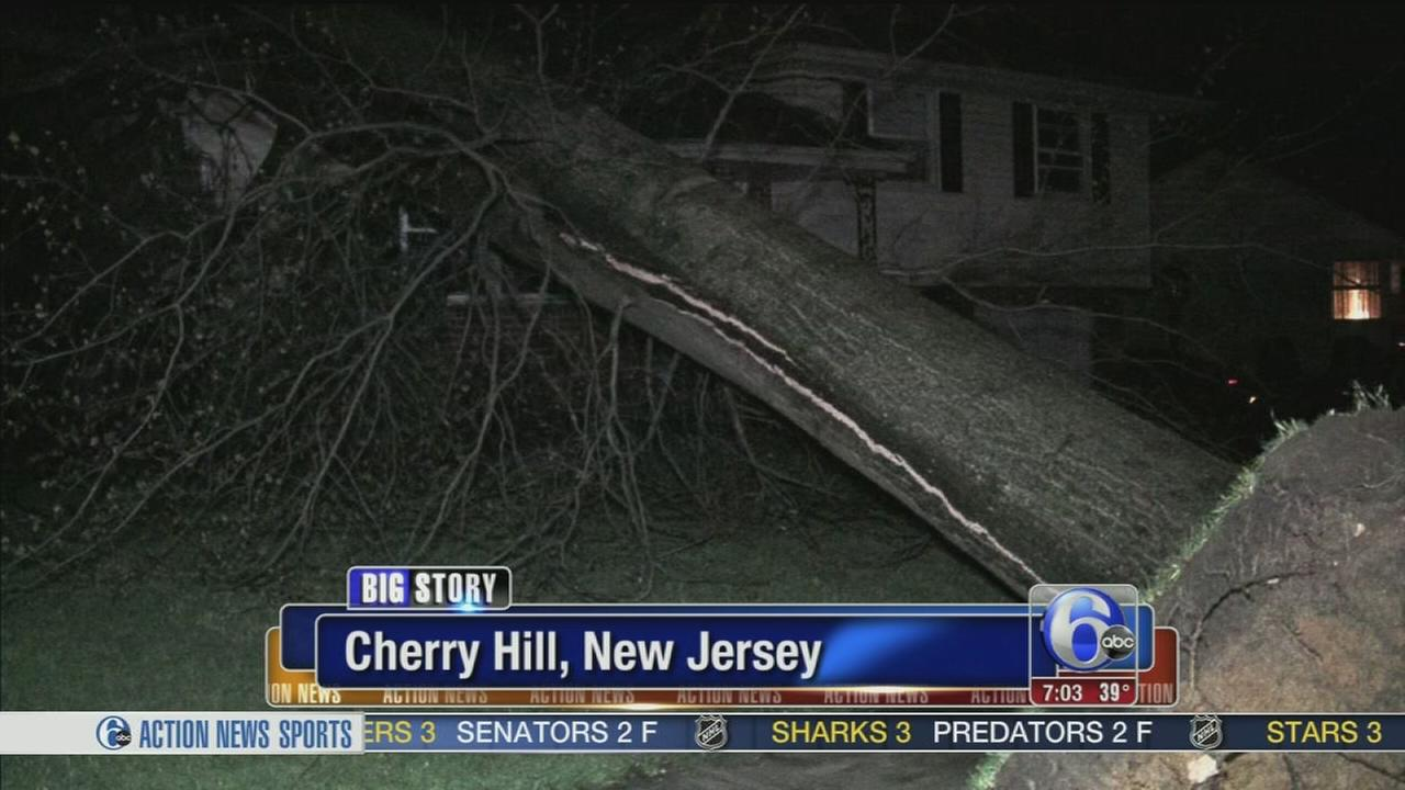 VIDEO: Tree topples on house in Cherry Hill