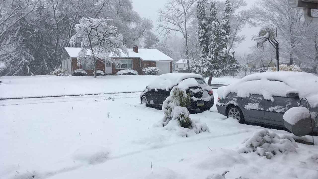 The snowy view from Berwyn, Pennsylvania.Bridget Bonner