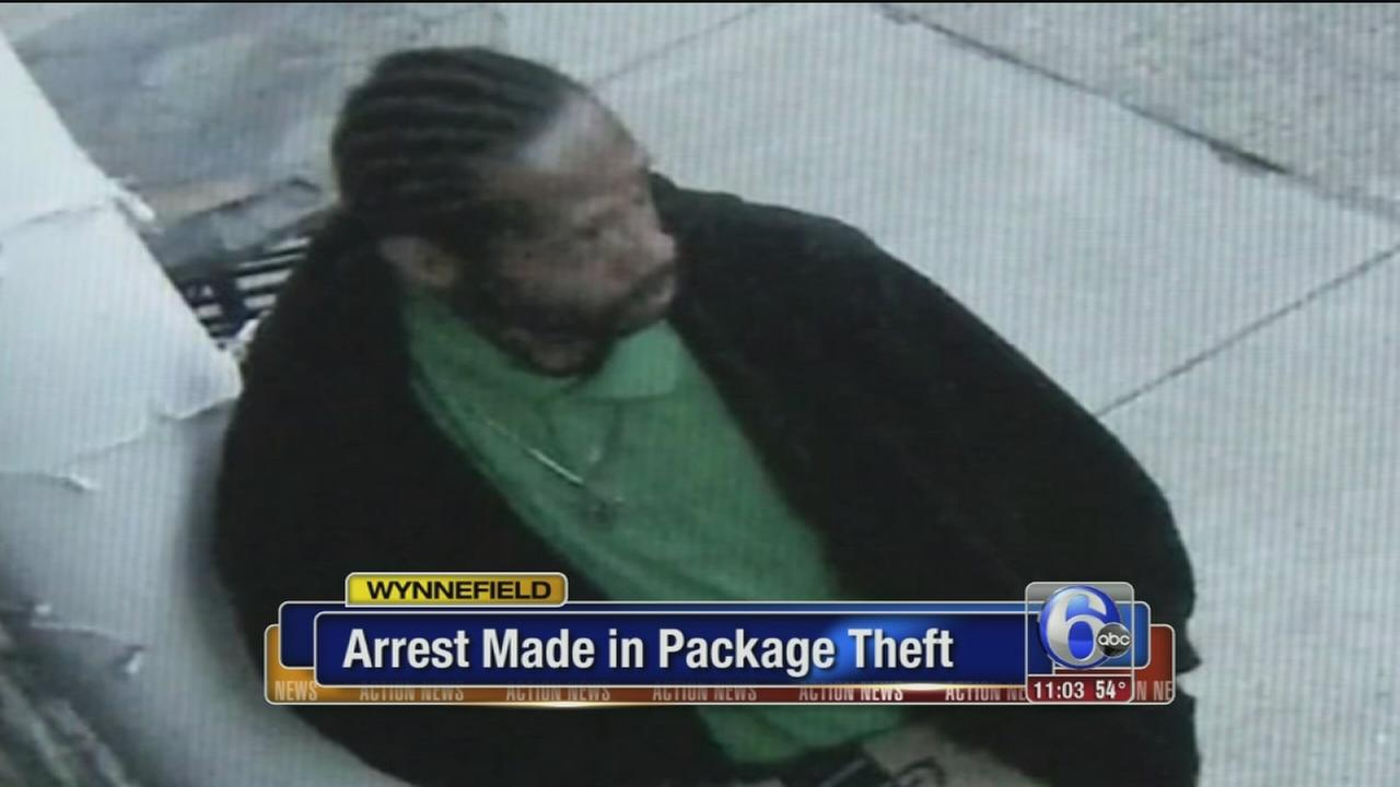 VIDEO: Theft suspect arrested