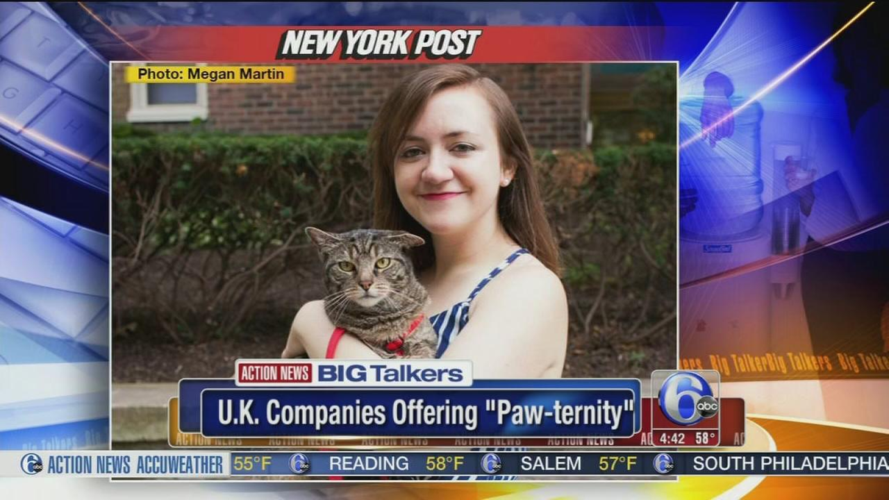 VIDEO: U.K. companies offering Paw-ternity leave