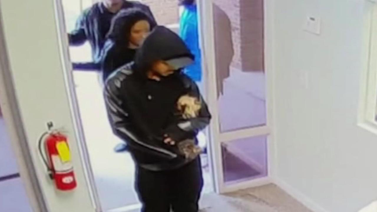 A group of young adults are seen on camera taking the dog of a Gloucester County family.