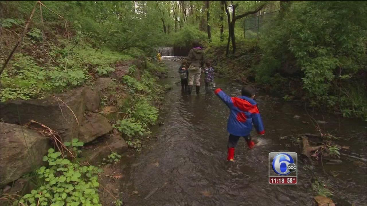 VIDEO: Outdoors become classroom for many preschoolers
