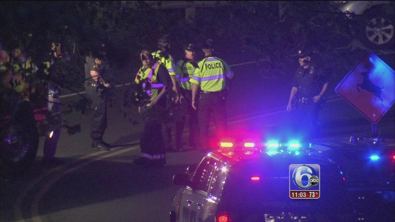 VIDEO: Haverford crash