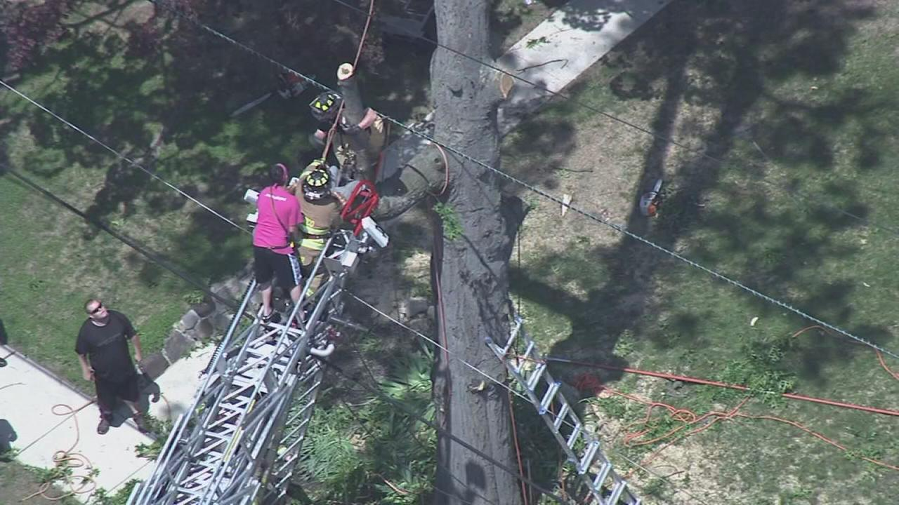 VIDEO: Man rescued after electrical shock