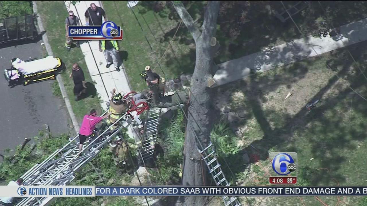 VIDEO: VIDEO: Man rescued from tree after suffering electrical shock