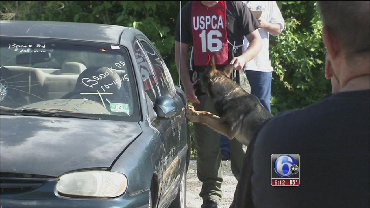 VIDEO: US Police Canine Association National Detector Dog Trials