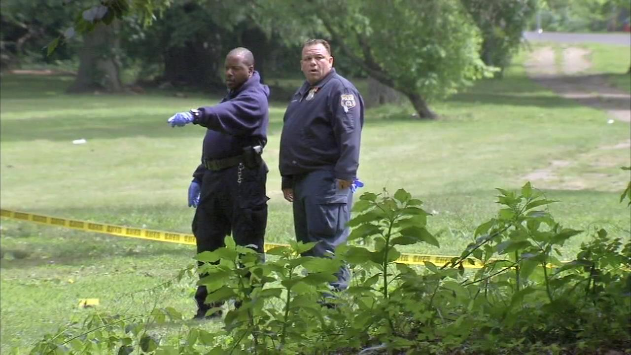June 14, 2016: The discovery was made around 8:15 a.m. Tuesday in the 5300 block of Georges Hill Drive, near the Mann Center.