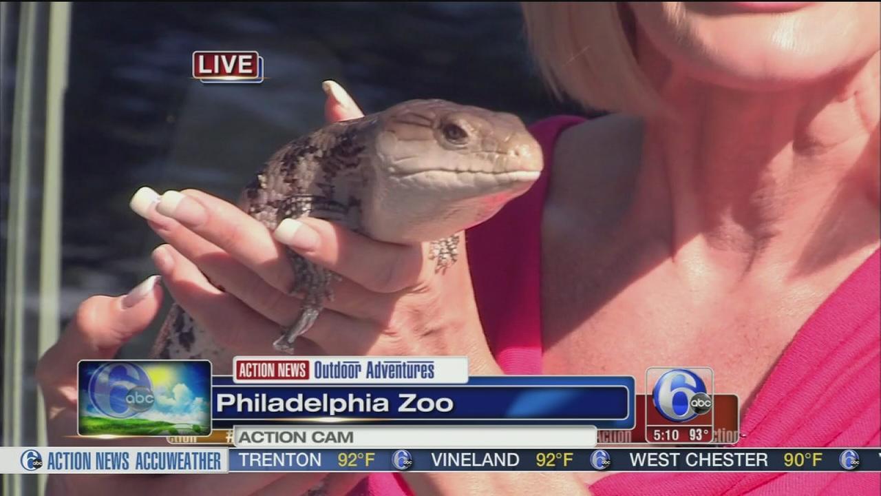 VIDEO: Cecily Tynan at the Zoo