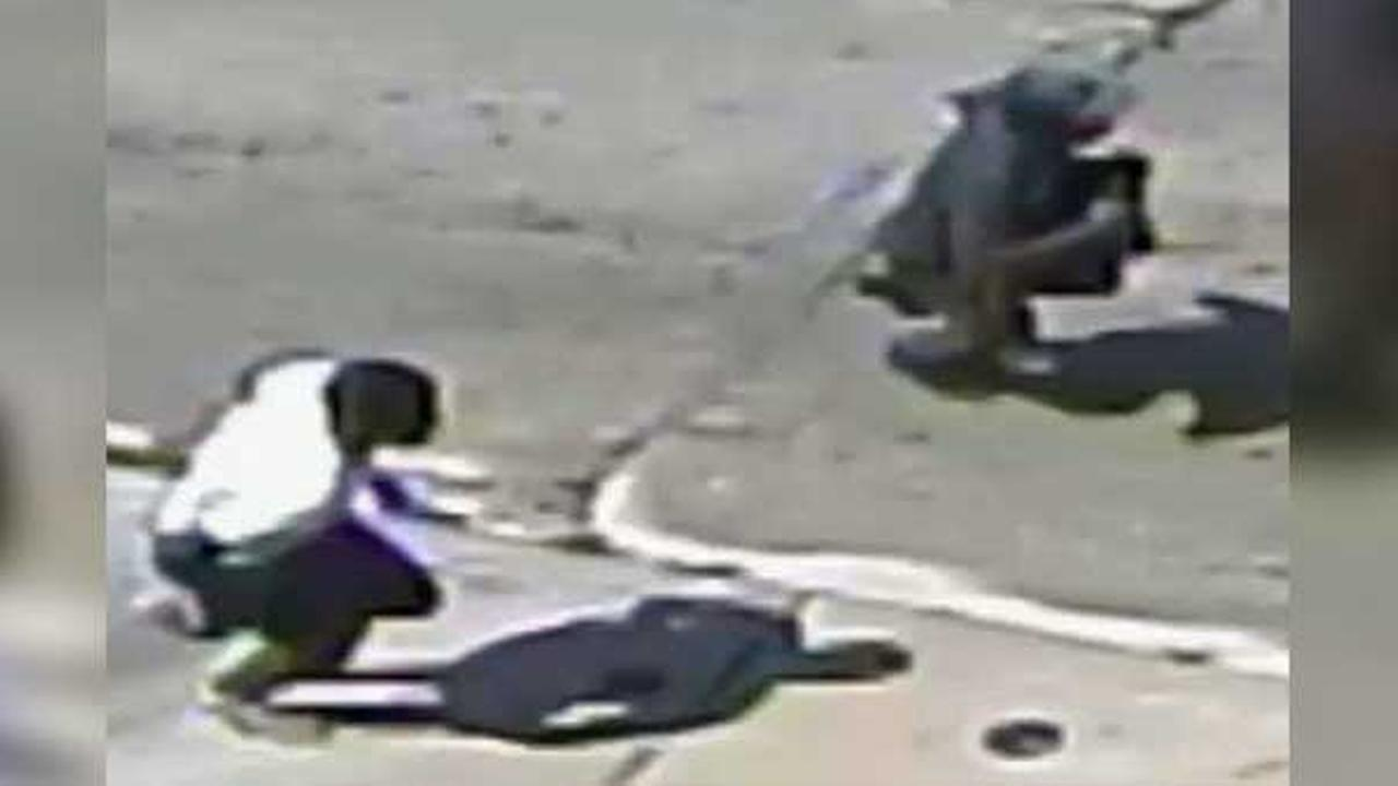 A 67-year-old man was beaten and robbed in broad daylight by two suspects on the  5900 Hutchinson Street in Fern Rock.