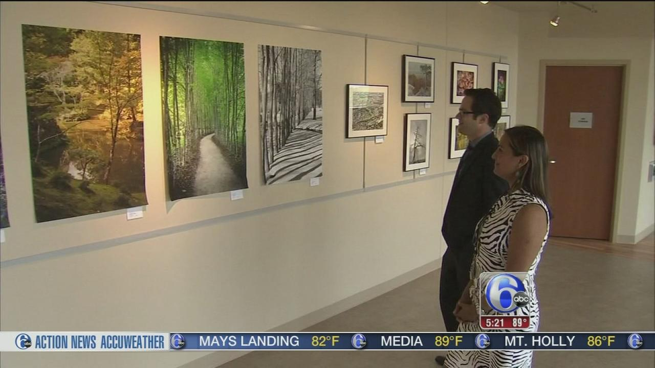 Hospital Mother Nature art showcase