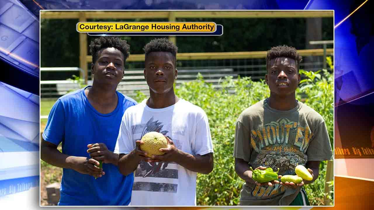 gang com teens ask for summer jobs at housing authority to stay out of gangs
