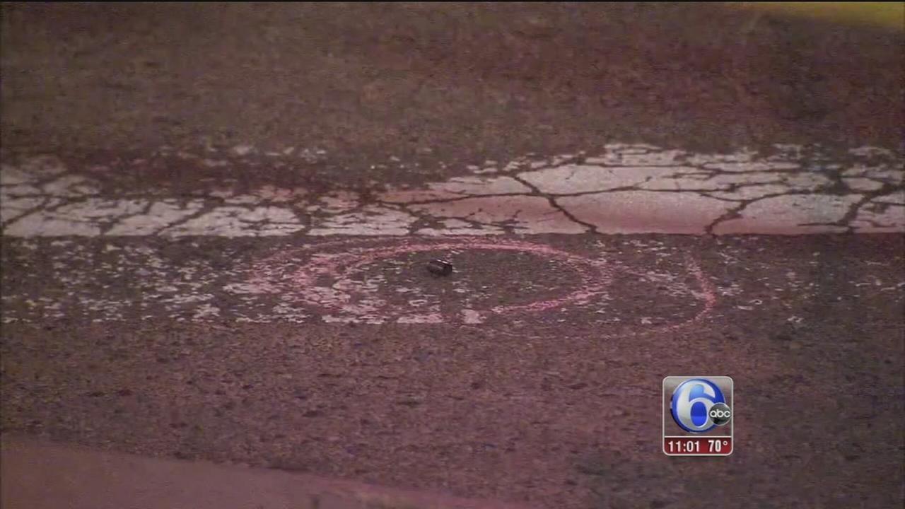 VIDEO: Police shoot dog in South Philadelphia