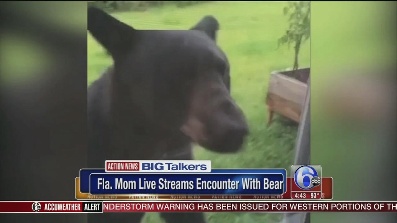 VIDEO: Florida mom live streams close encounter with bear on Facebook