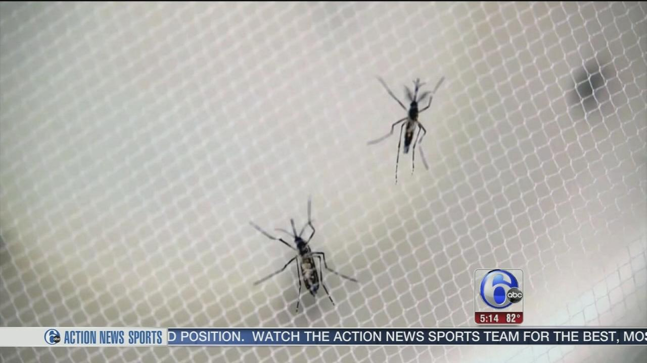 VIDEO: More cases of Zika expected