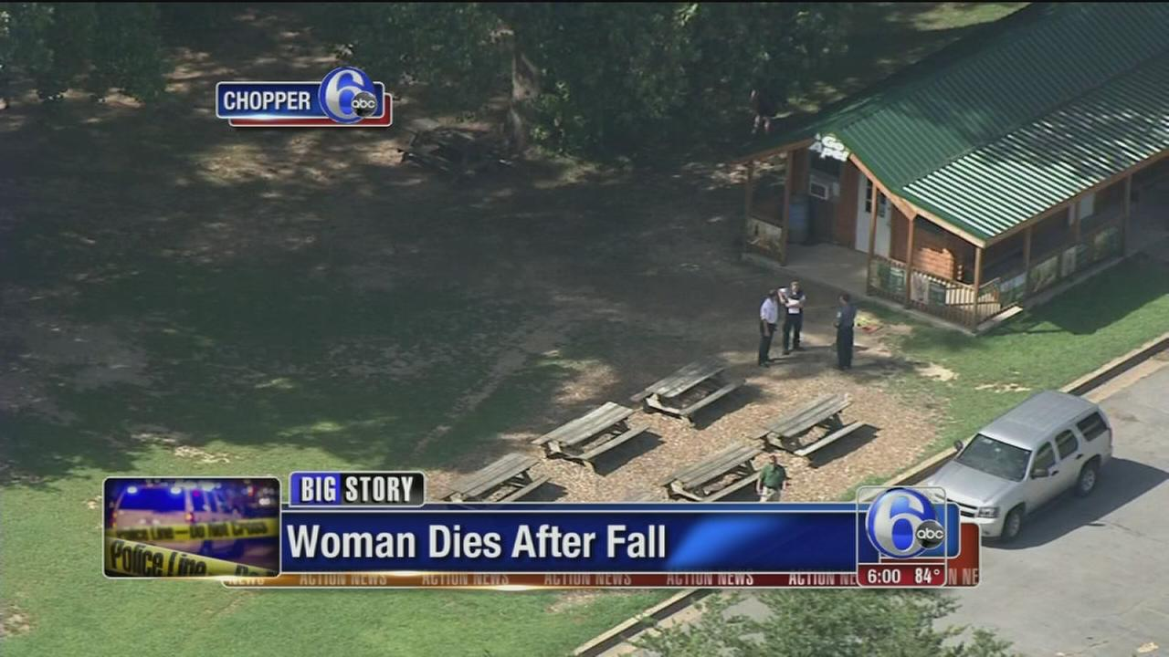 VIDEO: Woman dies after fall