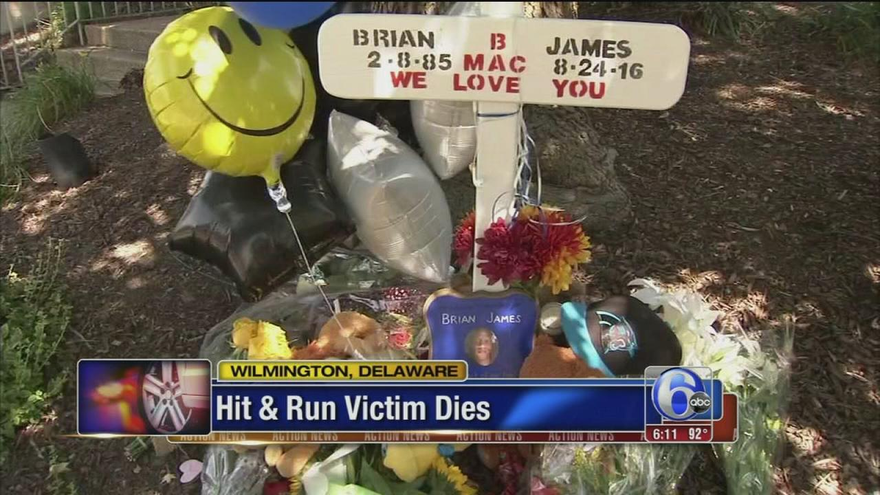 VIDEO: Hit-and-run victim dies
