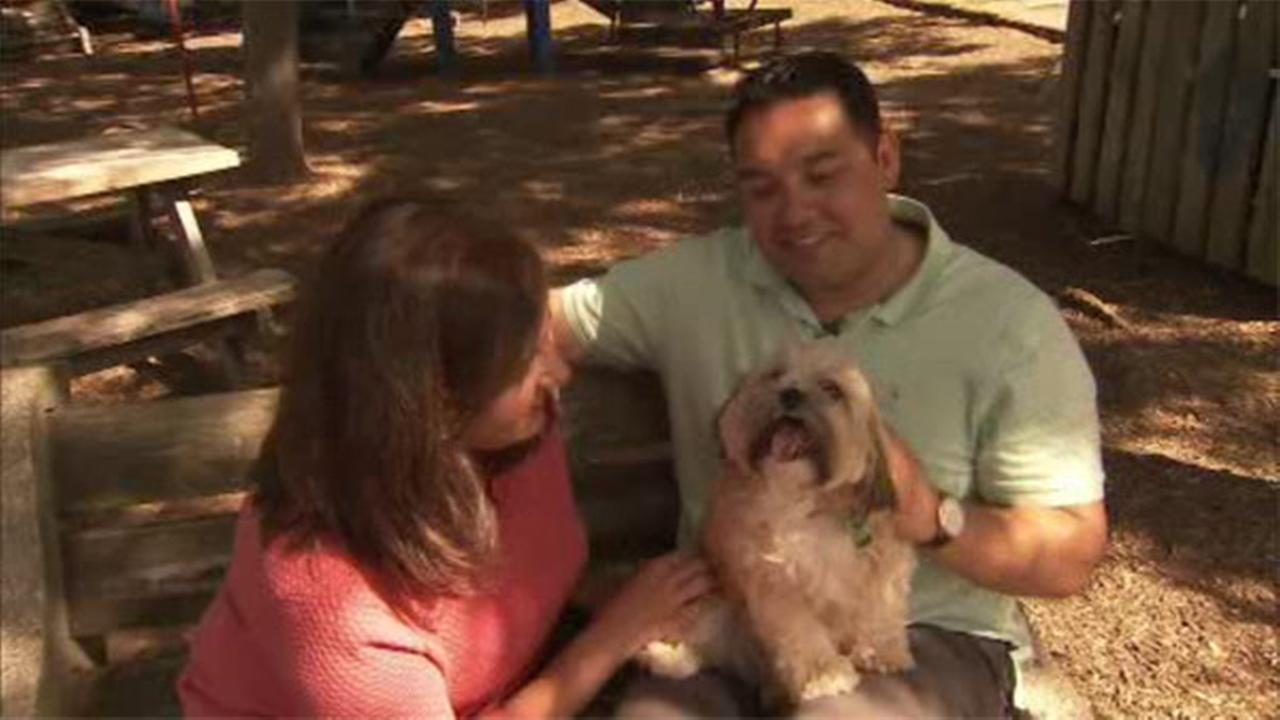 Shelter Me:  Saved Me Animal Rescue
