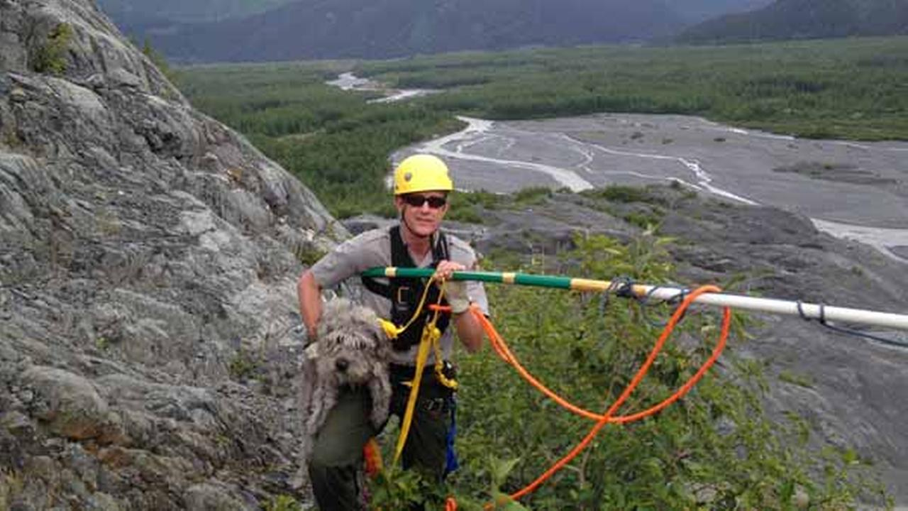 Kenai Fjords National Park Ranger John Anderson is shown with Sadie after her rescue from a ledge near a glacier on Monday, June 30, 2014, at Kenai Fjords National Park, Alaska.