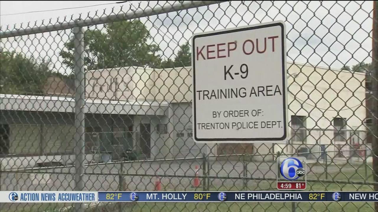 VIDEO: Trenton K-9 cops accused of bringing prostitute in HQ