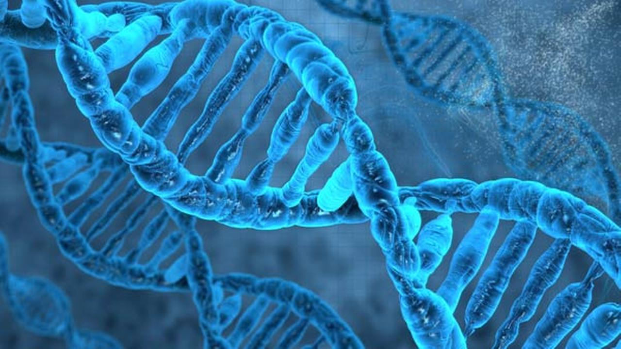 What direct-to-consumer DNA tests will or won't tell you
