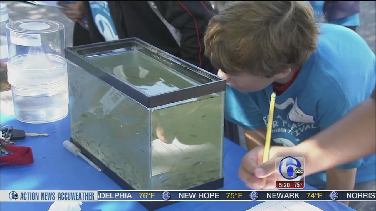 Make A Splash Water festival
