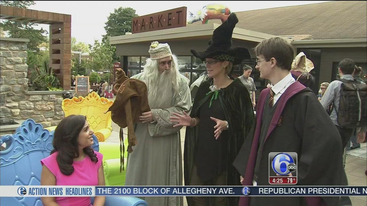 VIDEO: Harry Potter festival in Chestnut Hill