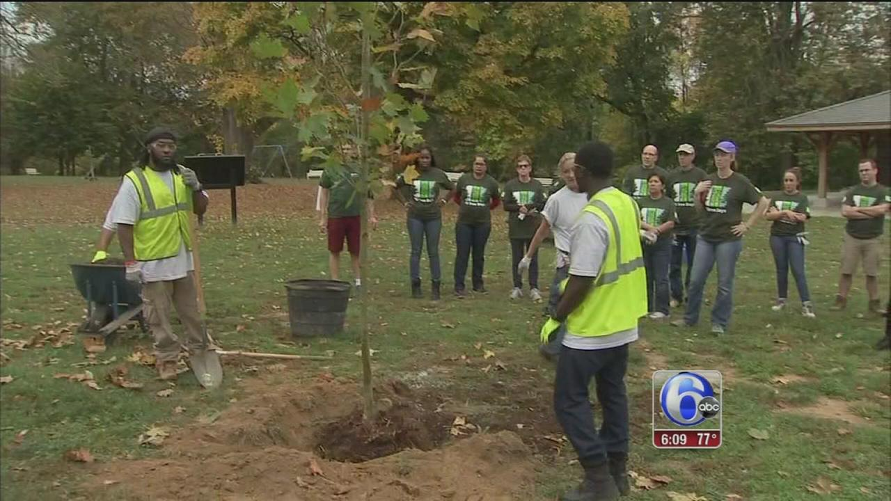 TD Banks tree days initiative