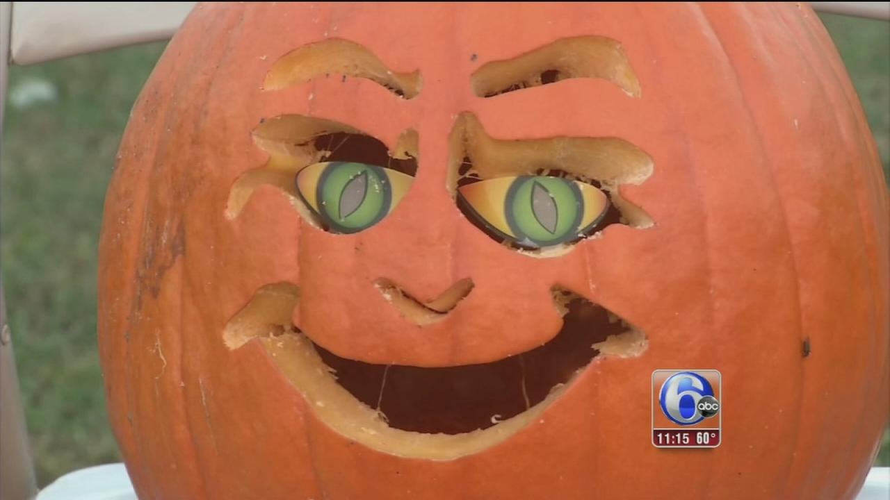 Pumpkin parade benefits Bringing Hope Home
